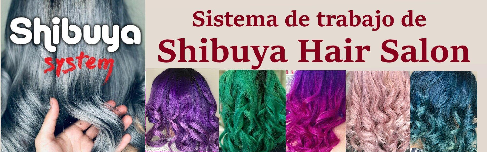 Sistema de trabajo de Shibuya Hair Salon
